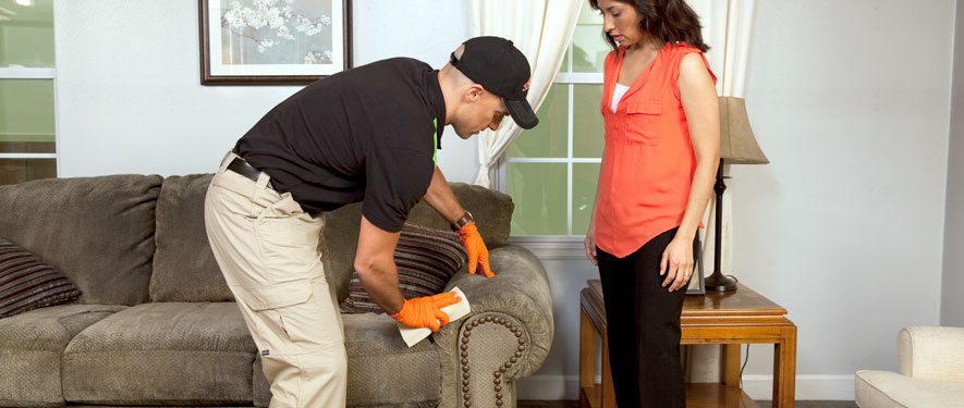 Green Bay, WI carpet upholstery cleaning